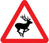 Wild animals likely to be in road ahead